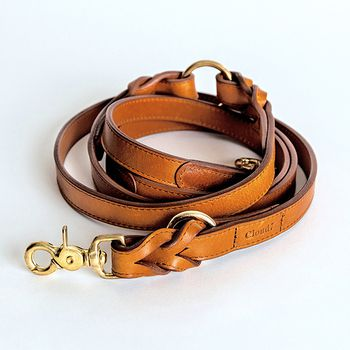 Cloud7 HYDE PARK Braided Leather Dog Leash L